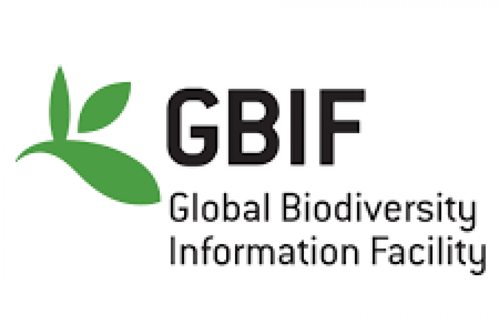 Global Biodiversity Information Facility (GBIF) Name